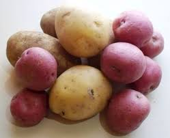 Image of New and Fingerling  Potatoes